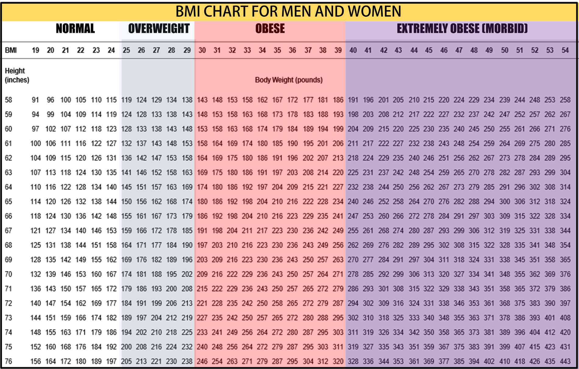 How To Calculate Bmi – Bmi Index Chart Template